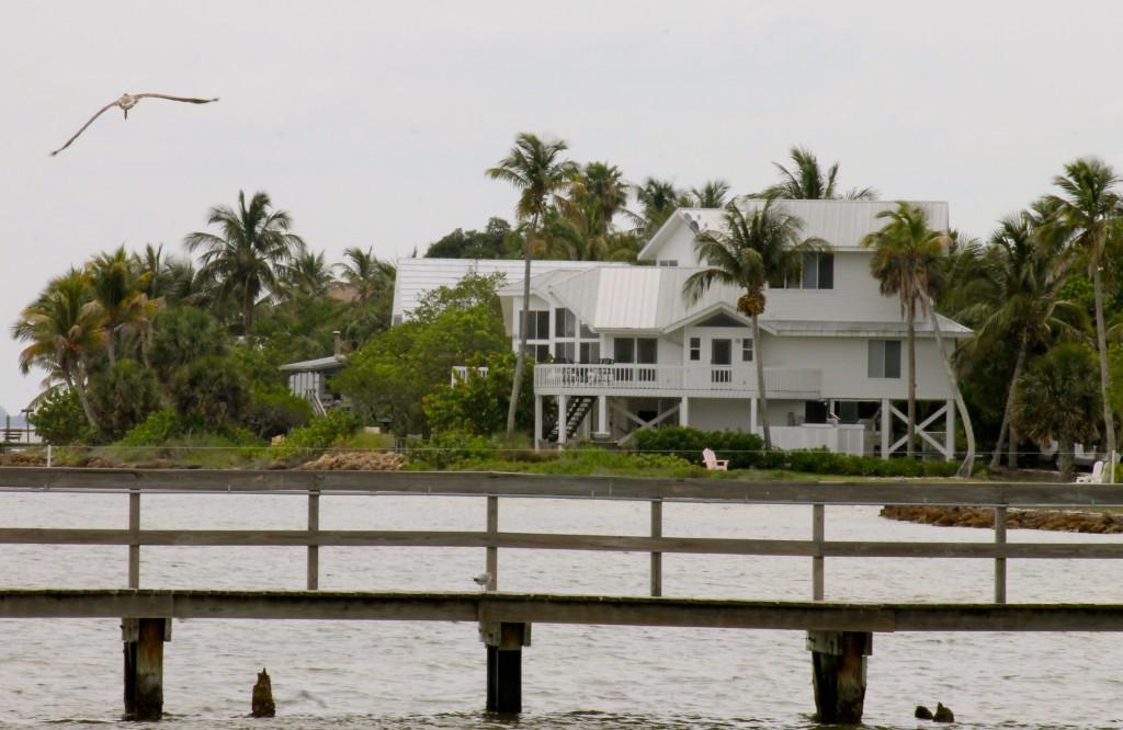 Island Architecture & Pelicans