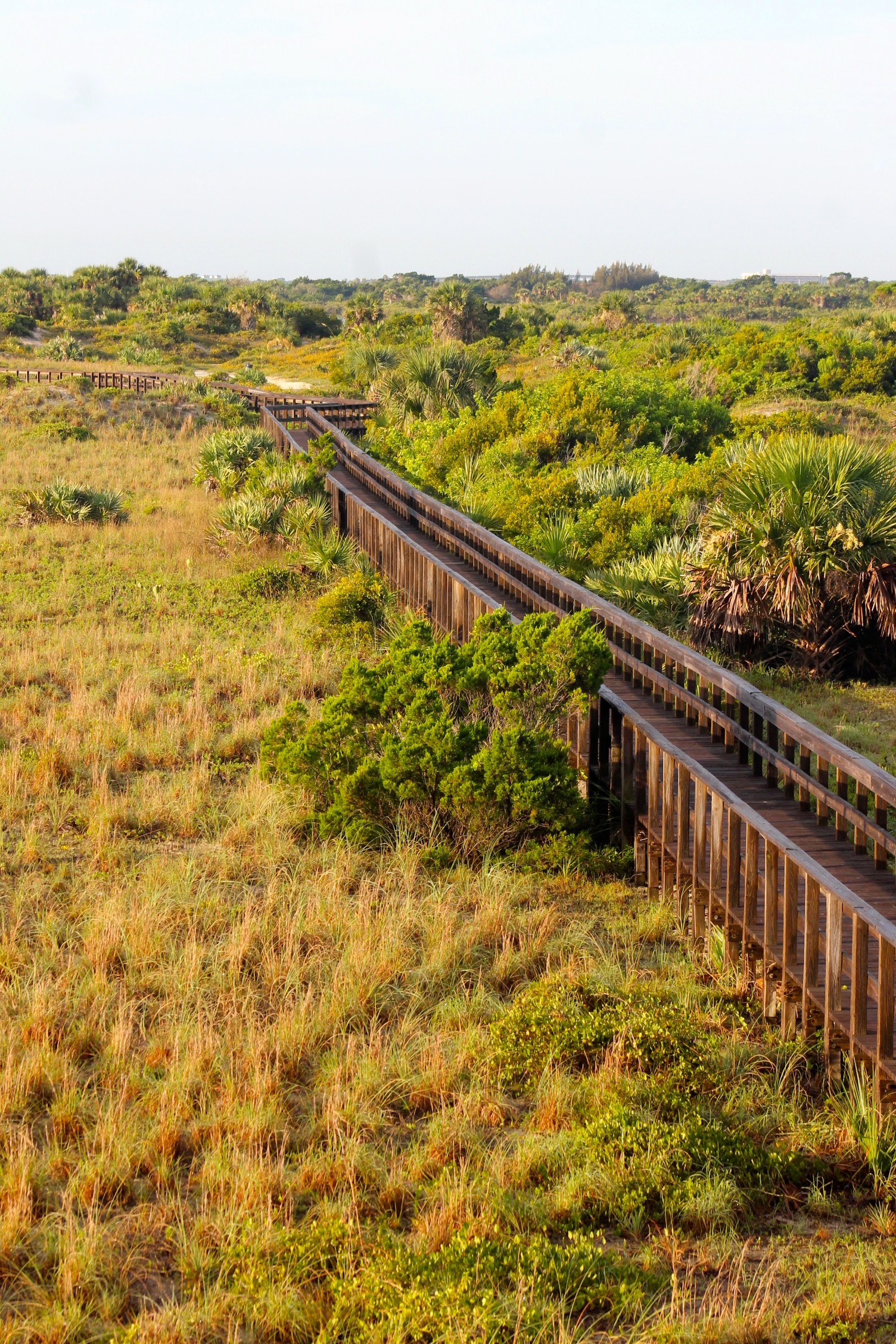 wooden walkway at Dunes Park, view from watch tower