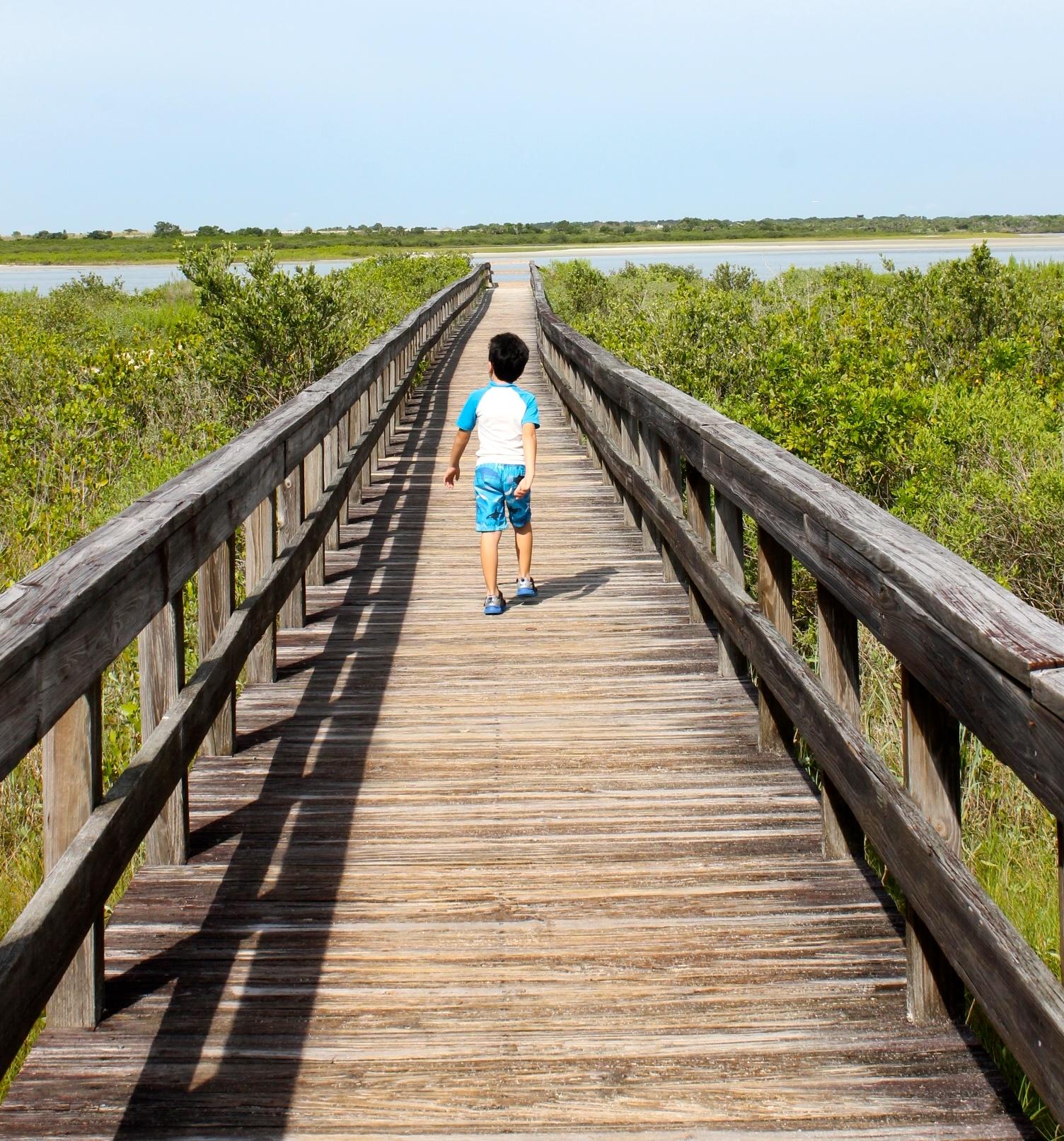 boardwalk at dunes park in New Smyrna beach