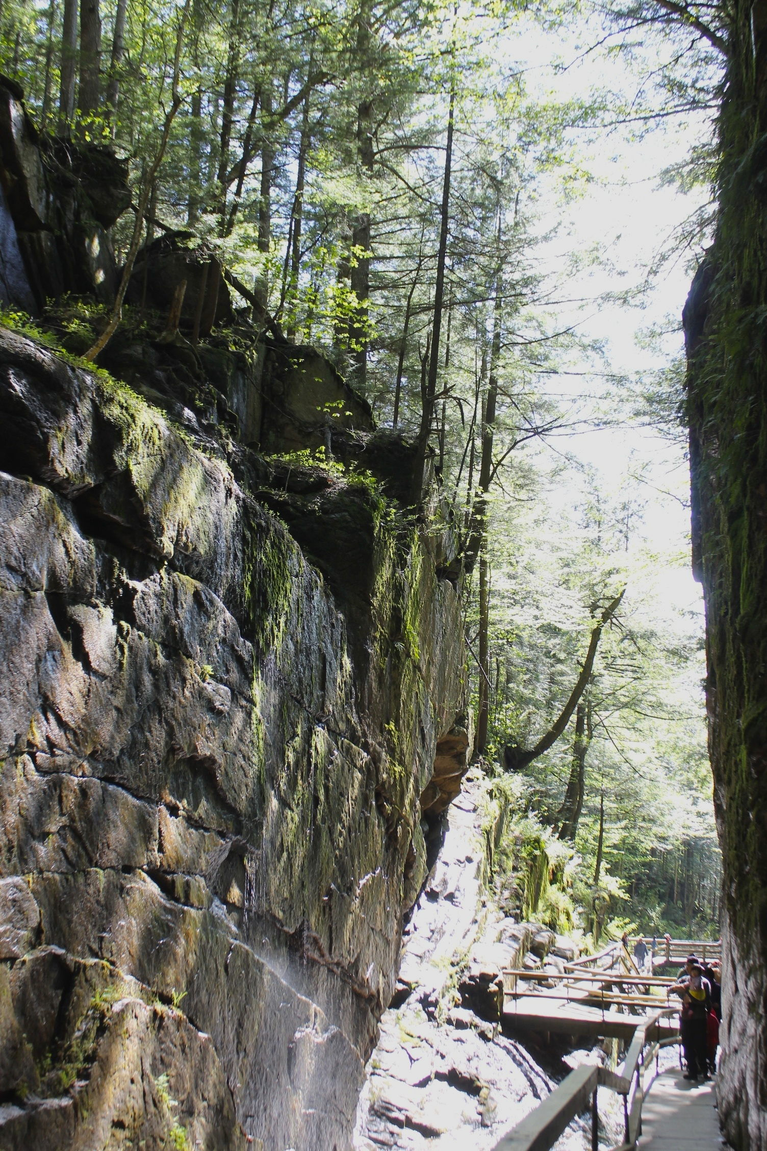 Flume Gorge In Franconia Notch State Park New Hampshire