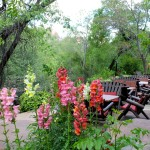 Briar Patch Inn Sedona