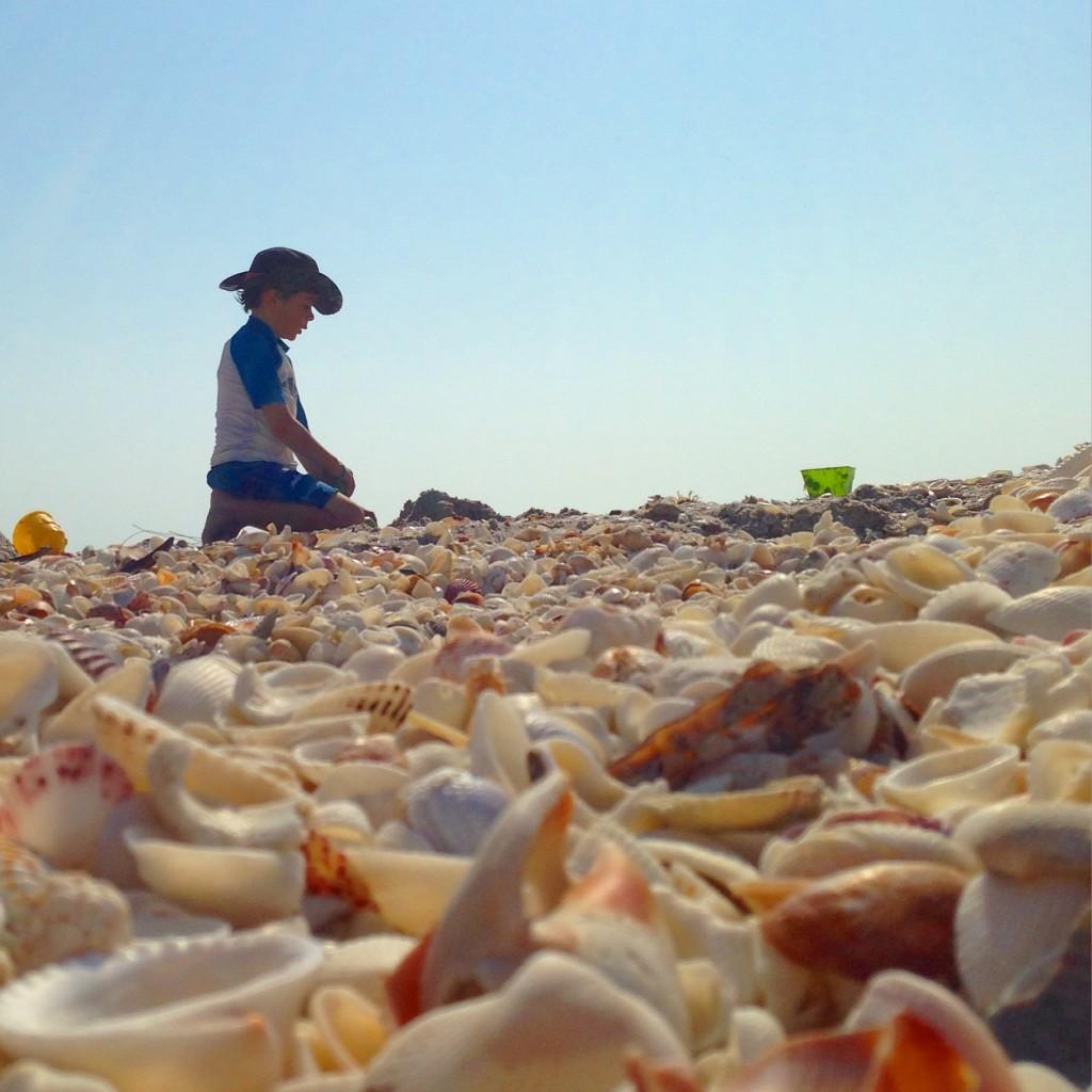 boy shelling in Sanibel beach