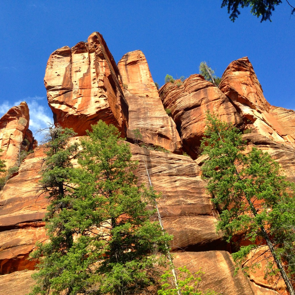 Canyon walls at West Fork trail in Sedona