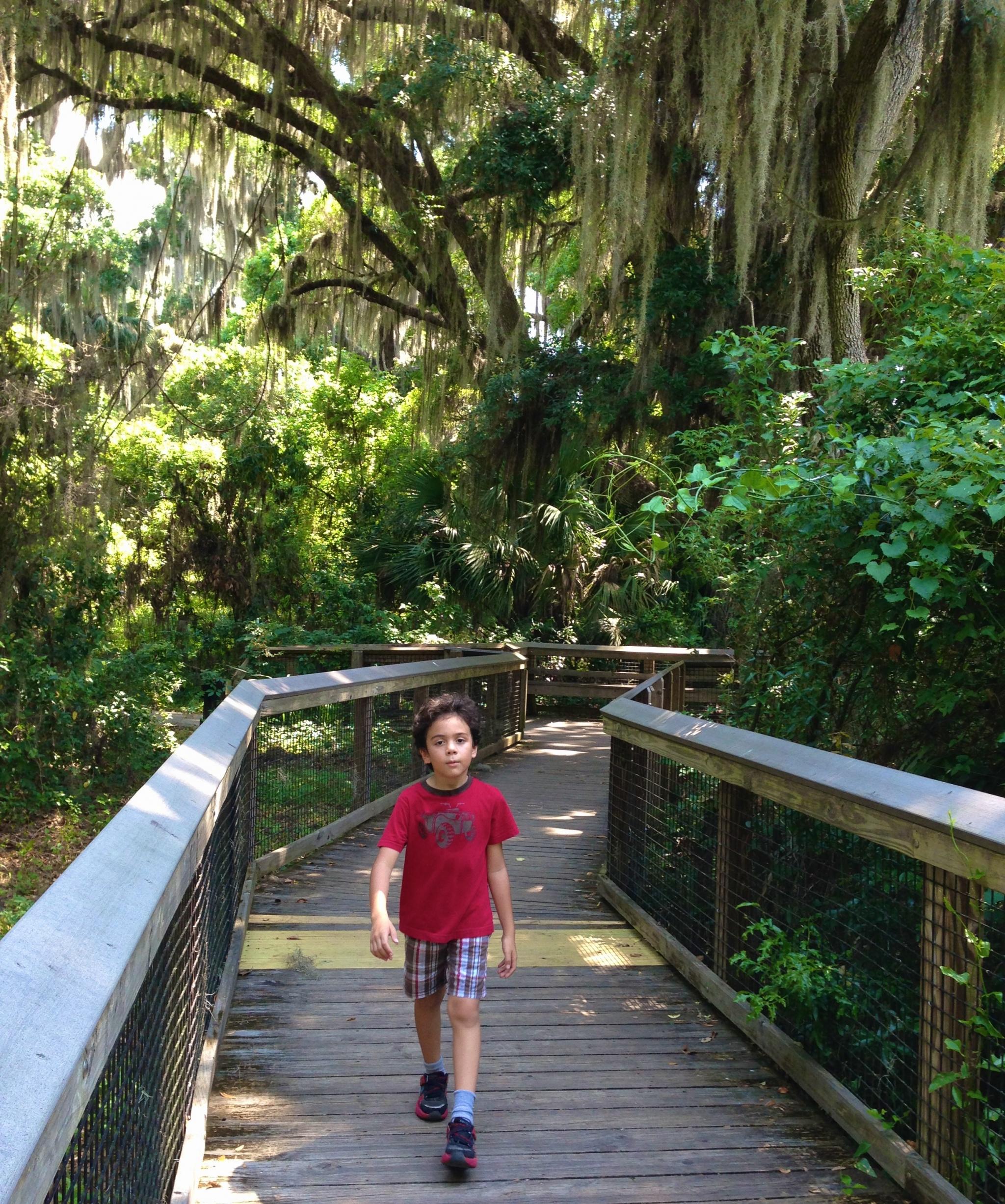 LaChua trail Gainesville