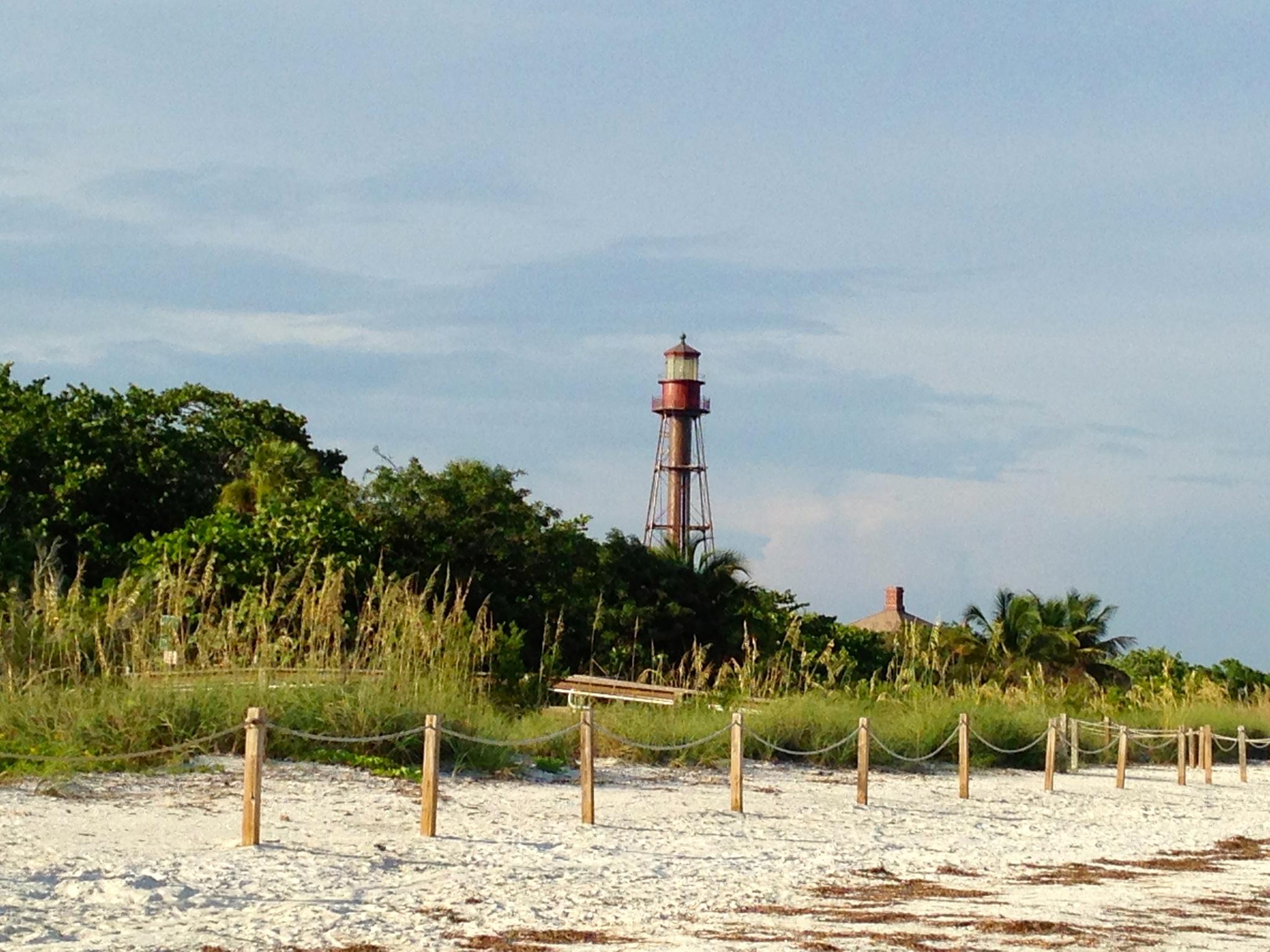 Lighthouse beach strip galleries 15