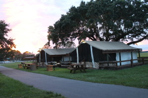 10 Great Reasons To Go Glamping At Westgate River Ranch