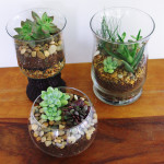 easy to make terrarium