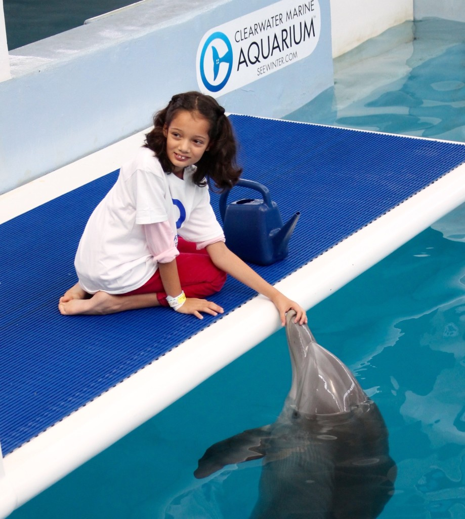 Meeting Hope at the Clearwater Aquarium