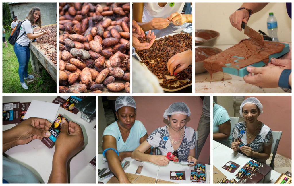Chocal cacao cooperative in Dominican Republic