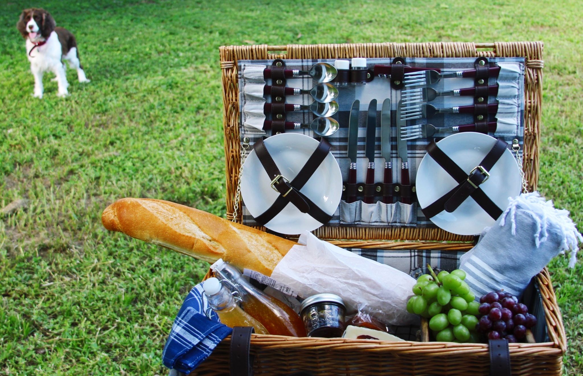 Latino inspired picnic basket