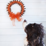 Thanksgiving dog treat wreath