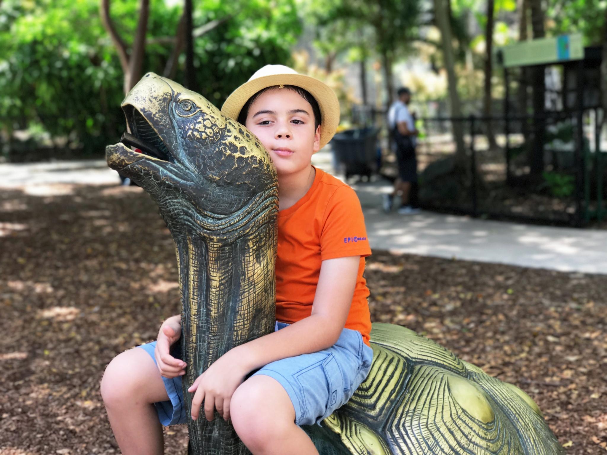 Jungle Island playground