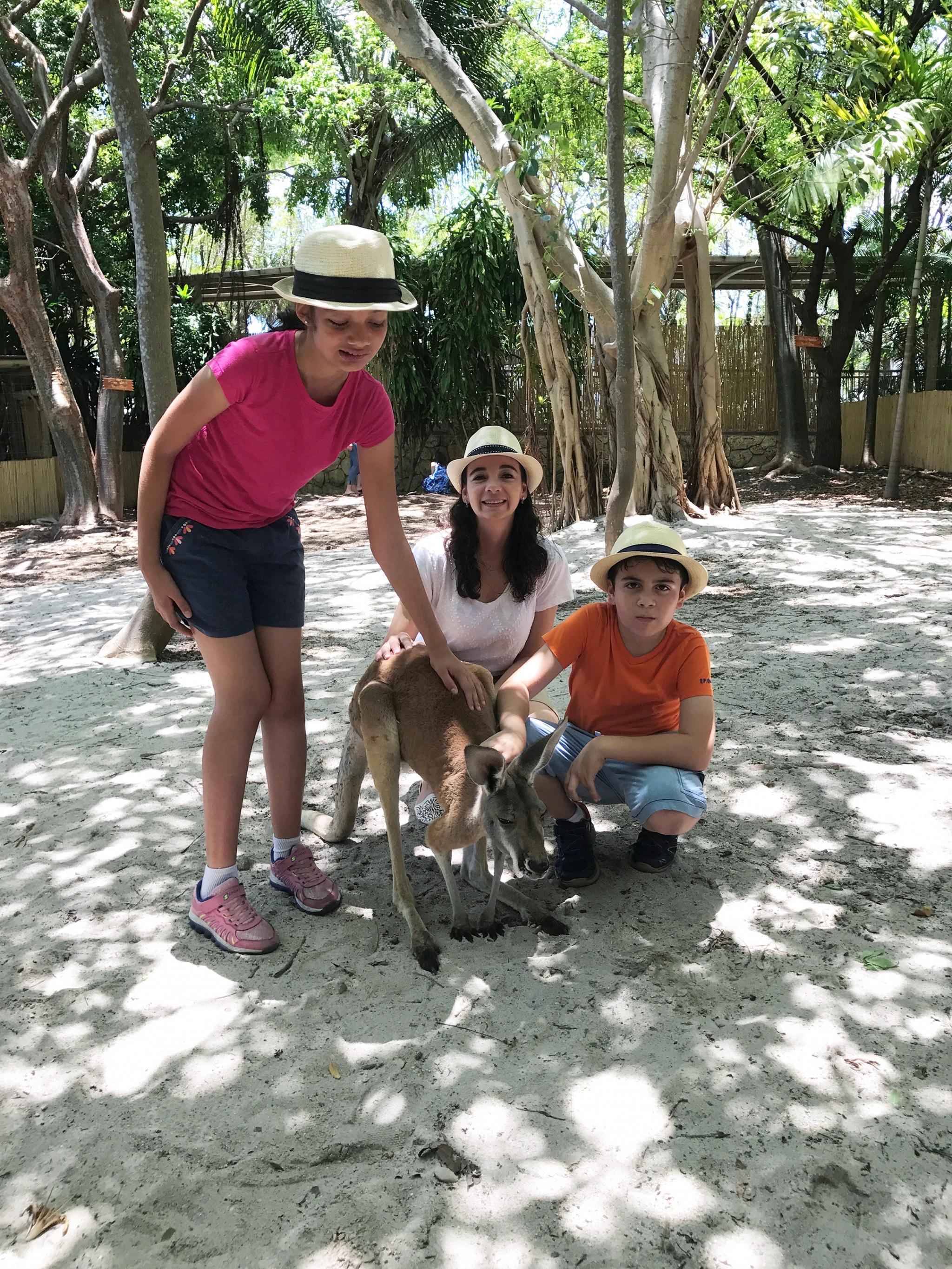 Petting kangaroos at Jungle Island