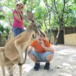 interacting with kangaroo at Jungle Island