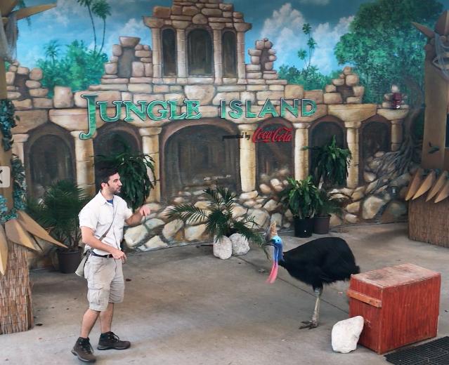 show at Jungle Island
