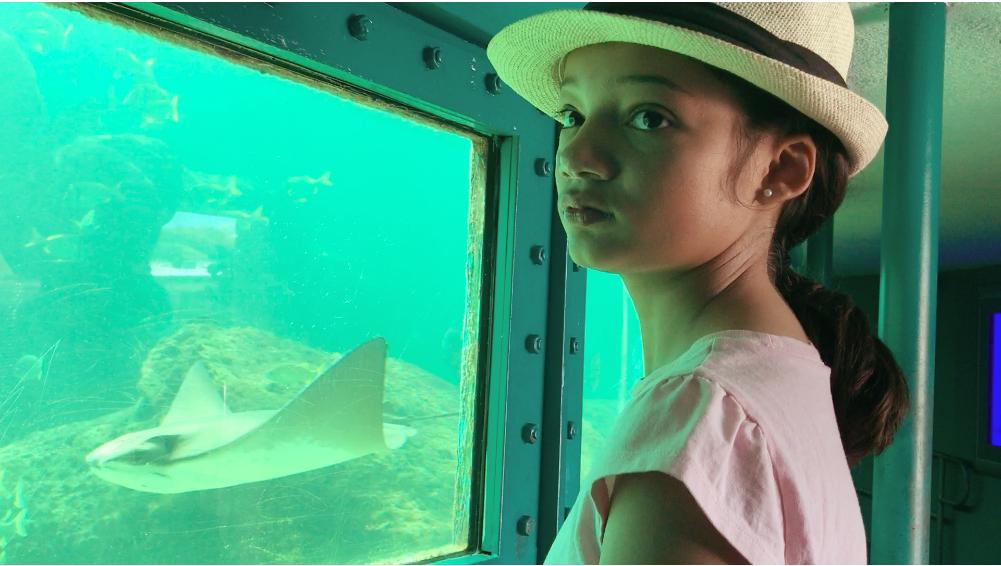 watching stingrays at Miami Seaquarium